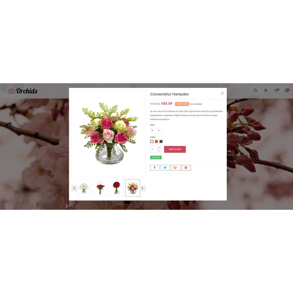 theme - Prezenty, Kwiaty & Uroczystości - Orchid - Flower Market - 7