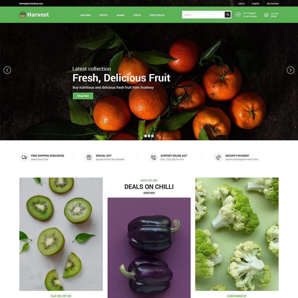 theme - Cibo & Ristorazione - Harvest Vegetables - Negozio di frutta fresca - 3
