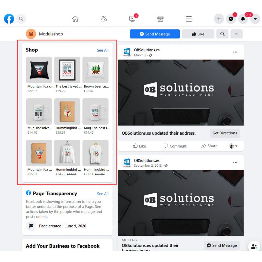 module - Produits sur Facebook & réseaux sociaux - Importateur de Catalogue sur Réseaux Sociaux Shop - 3