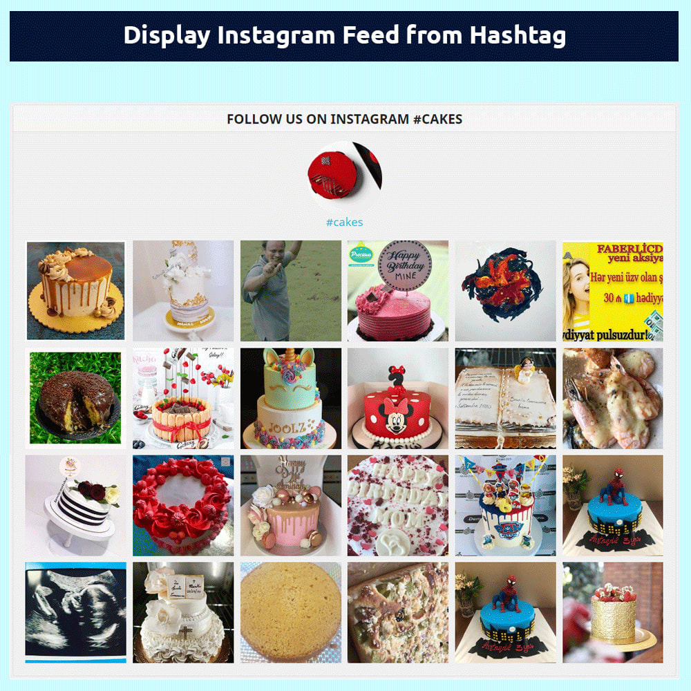 module - Prodotti sui Facebook & Social Network - Instagram Feed - without access token - 2