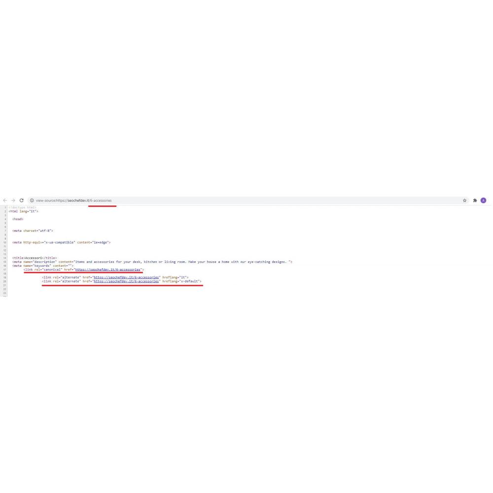 module - SEO (Posicionamiento en buscadores) - Canonical & Hreflang SEO module - 5