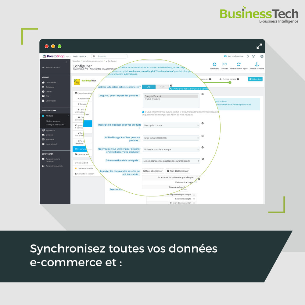 module - Remarketing & Paniers Abandonnés - Newsletter & Marketing automation avec Mailchimp - 2