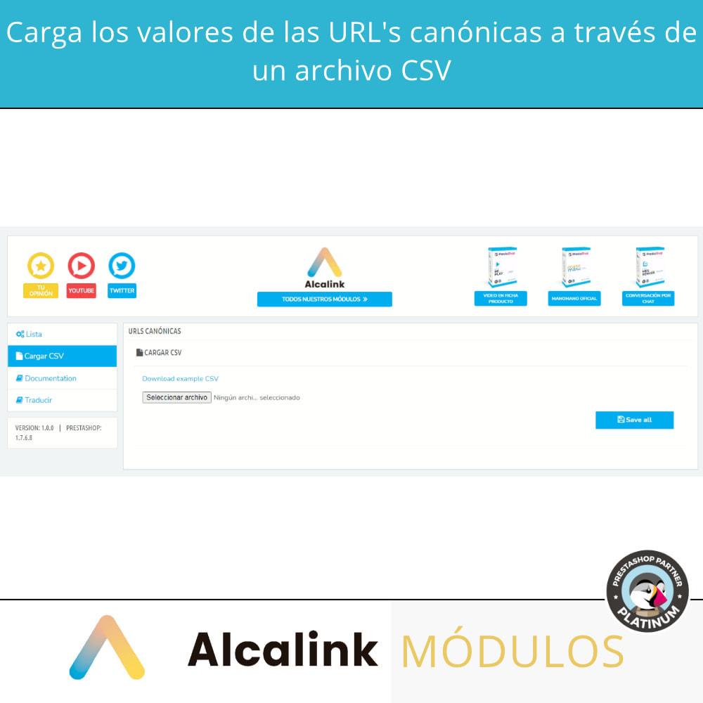 module - URL y Redirecciones - 2x1: Canonical SEO + Redirecciones SEO - 4