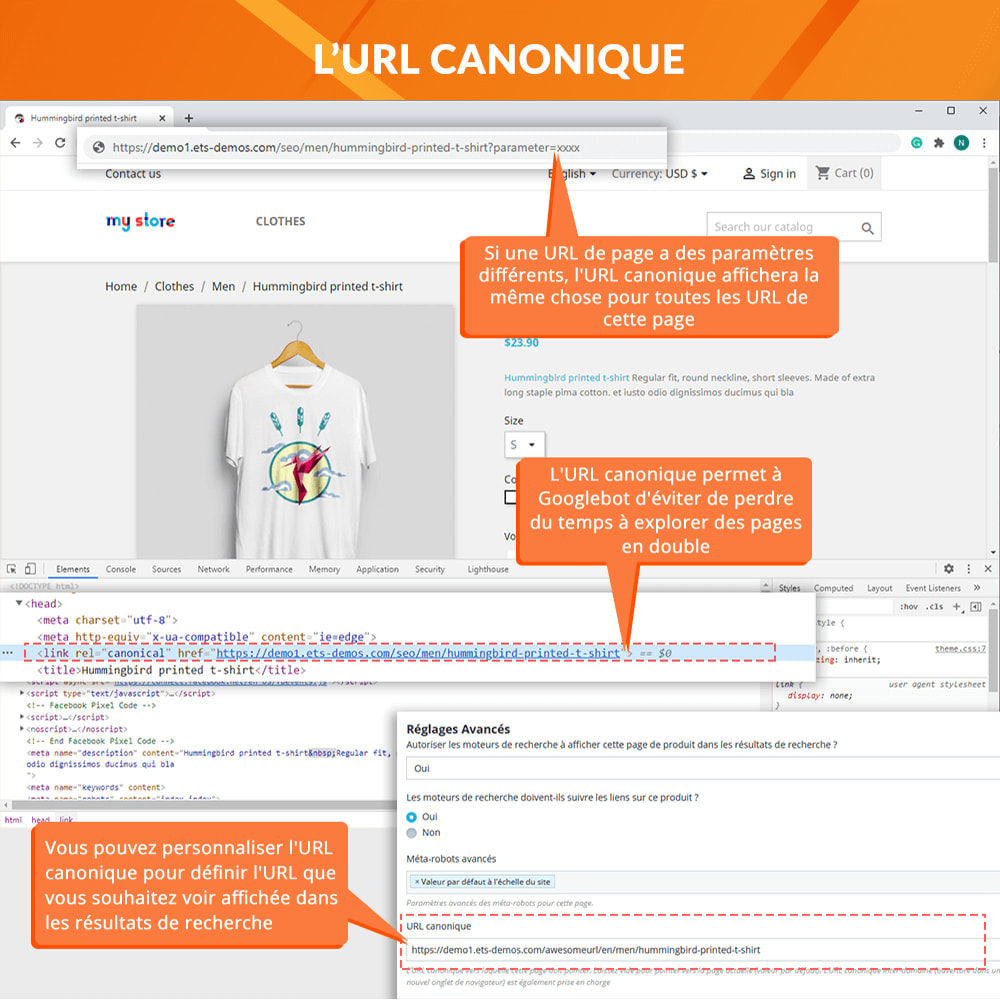 module - URL & Redirections - Awesome URL - Supprimer les ID (chiffres) & ISO des URL - 5