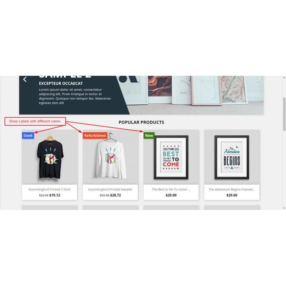 module - Altre informazioni & Product Tab - Flags - 1