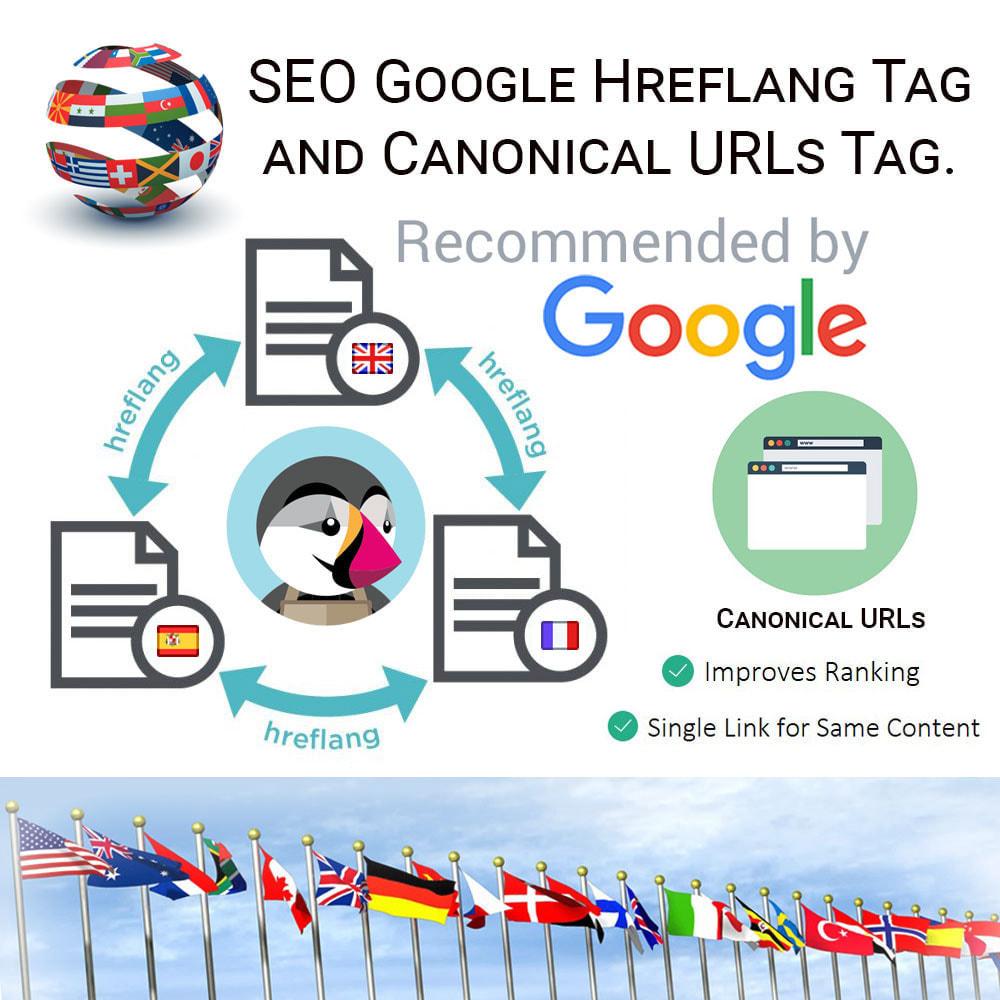 module - URL y Redirecciones - SEO Google Hreflang Tag and Canonical URLs Tag - 1