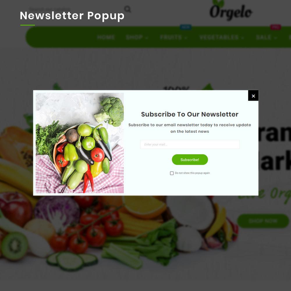 theme - Cibo & Ristorazione - Organic Mega Fresh–Grocery Super Store - 10