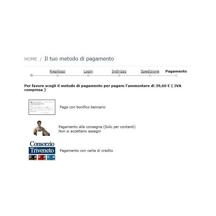 module - Оплата банковской картой или с помощью электронного кошелька - Consorzio Triveneto sistema di pagamento online - 1