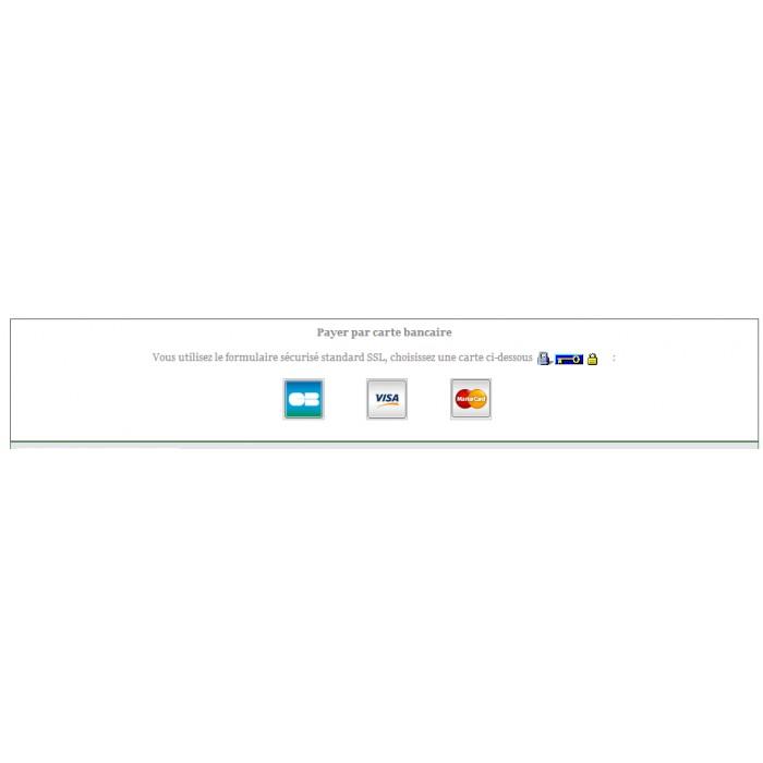 module - Оплата банковской картой или с помощью электронного кошелька - Sips 1.0 - Worldline Atos (1.5, 1.6 & 1.7) - 6