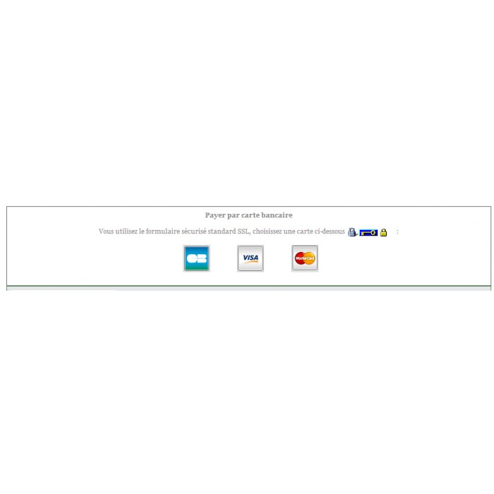 Image Result For Carte De Paiement Wikipdia