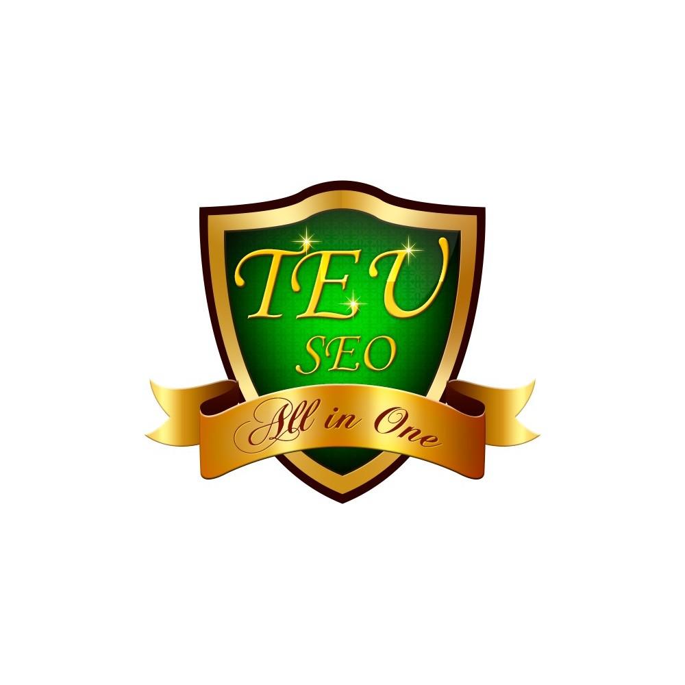 module - SEO (référencement naturel) - TEU SEO - Tous réunis en un - 1
