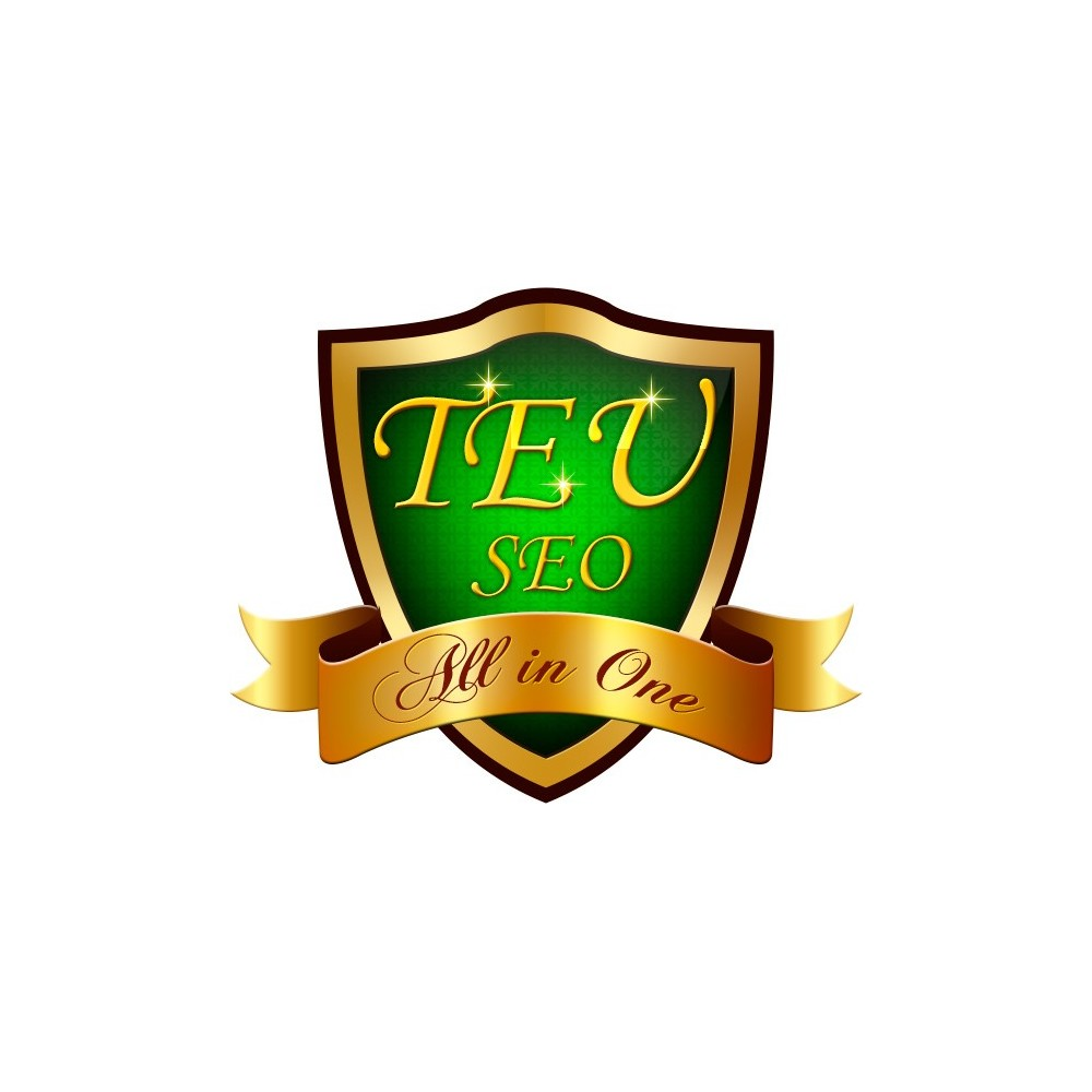 module - SEO (Suchmaschinenranking) - TEU SEO - Alle in einem - 1