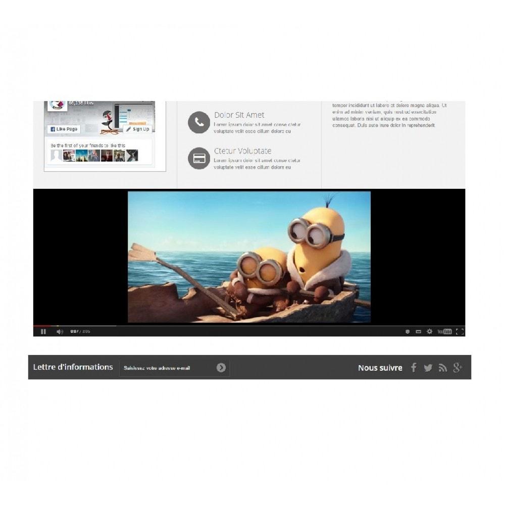 module - Vidéo & Musique - Afficheur vidéo (Youtube, Dailymotion, Vimeo...) - 4