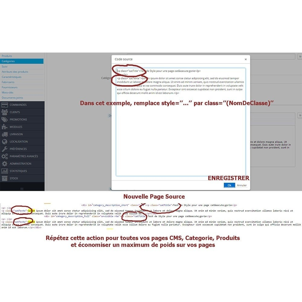module - Performance du Site - Ecrivez vos propres Feuilles de Style (css) - 15