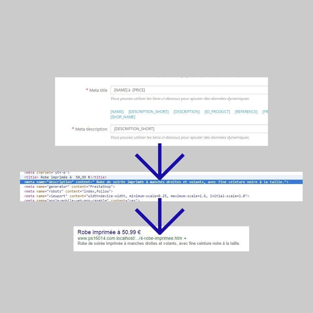 module - SEO (référencement naturel) - Optimisation du référencement easy seo - 4