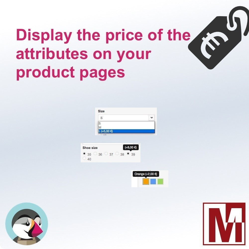 module - Versies & Personalisering van producten - Display attributes prices on your products - 1