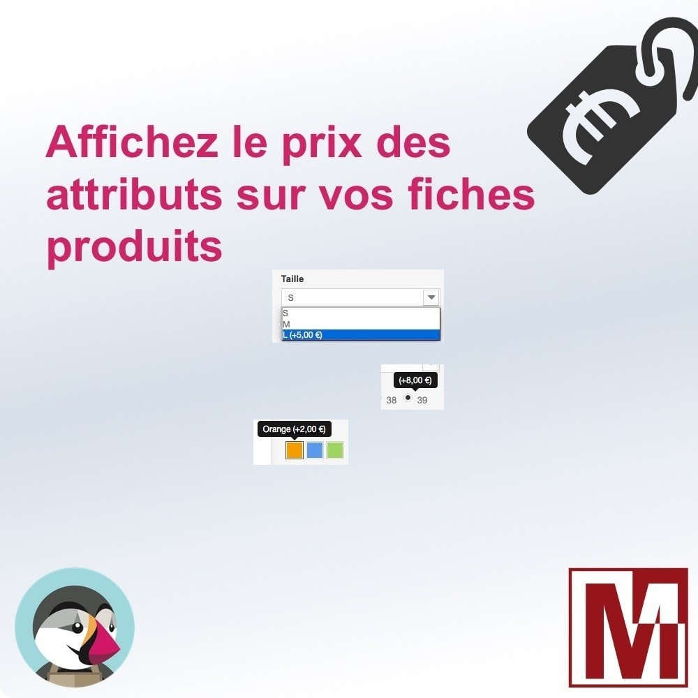 module - Déclinaisons & Personnalisation de produits - Affichez le prix des options sur vos produits - 1