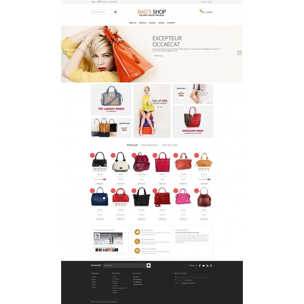 theme - Schmuck & Accesoires - Bags shop Multipurpose HTML5 - 2