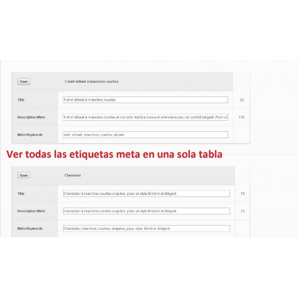 module - SEO (Posicionamiento en buscadores) - META TAGS EDITOR - 1