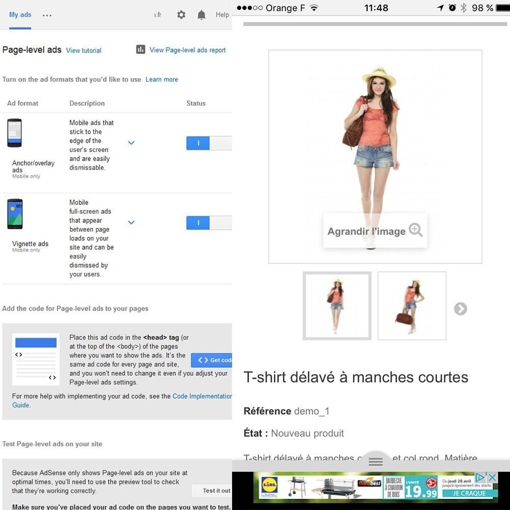 module - SEA SEM (paid advertising) & Affiliation Platforms - Google Adsense Ads - 5