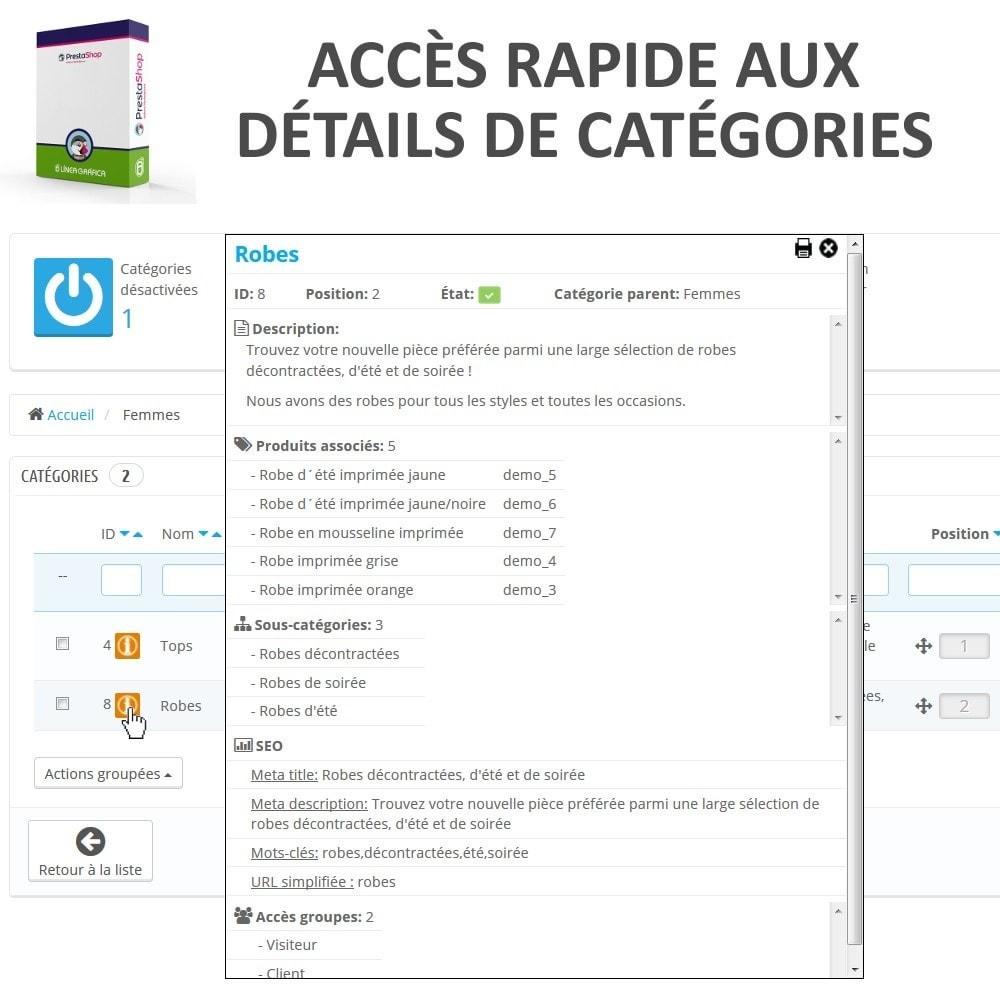 module - Edition rapide & Edition de masse - Aperçu / Accès Rapide aux Détails des Catégories - 1