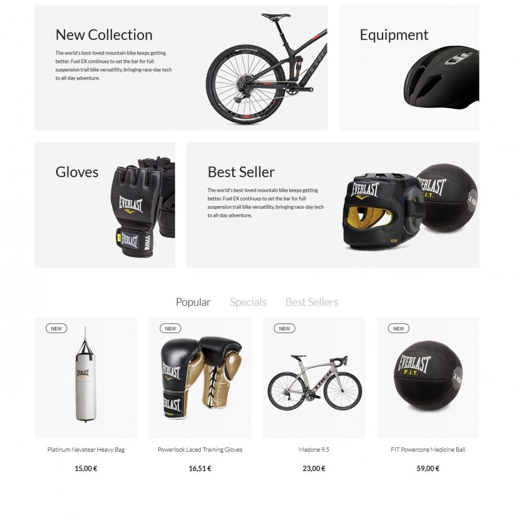 theme - Sport, Loisirs & Voyage - Passion - Sport Store - 3