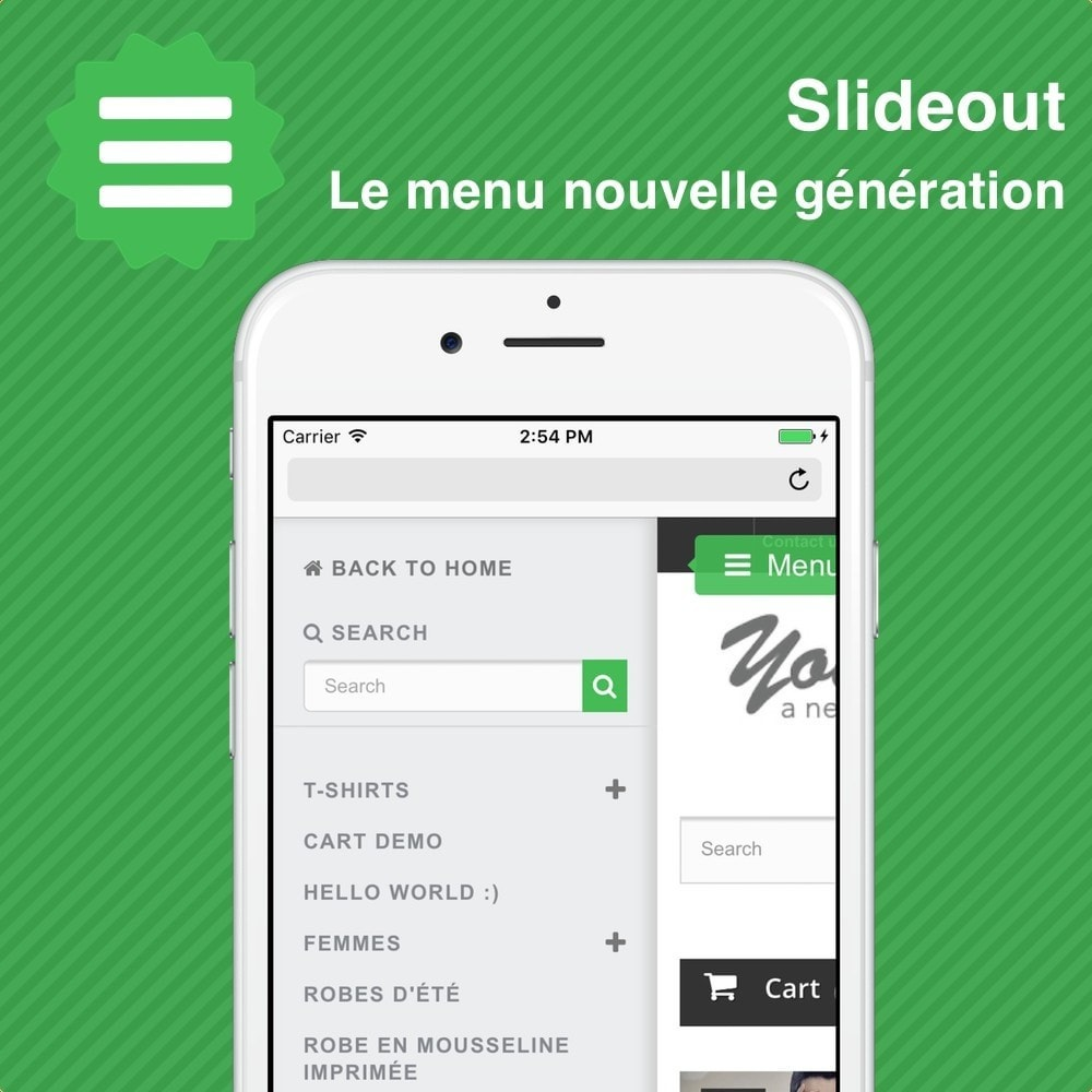 module - Menu - Slideout • Menu mobile - 1