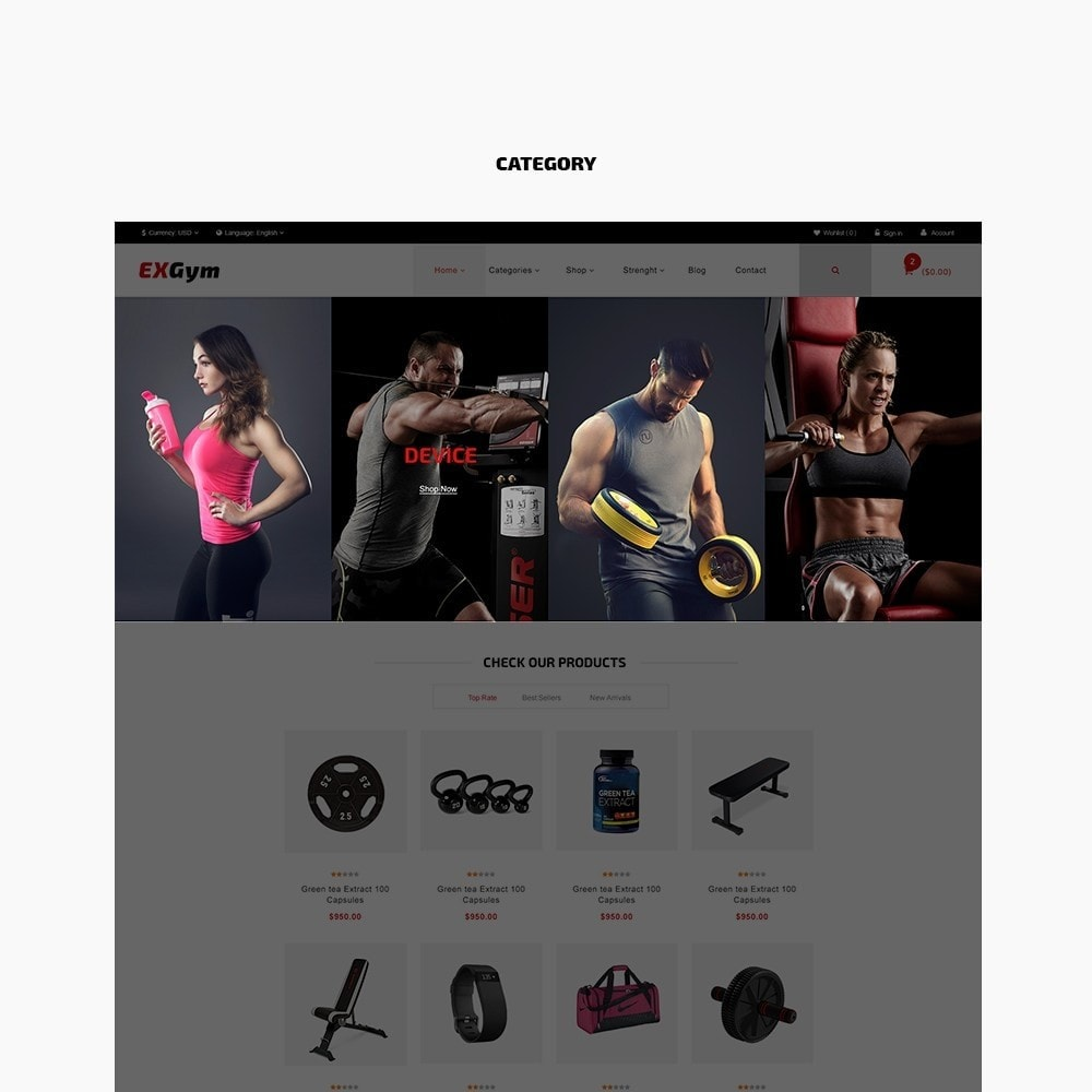 theme - Sports, Activities & Travel - Leo Exgym - 3