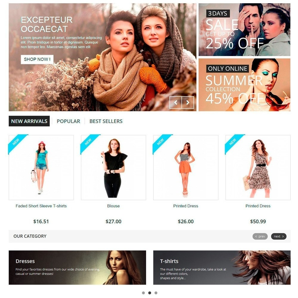 module - Slider & Gallerie - Responsive Carousel with Categories - 3