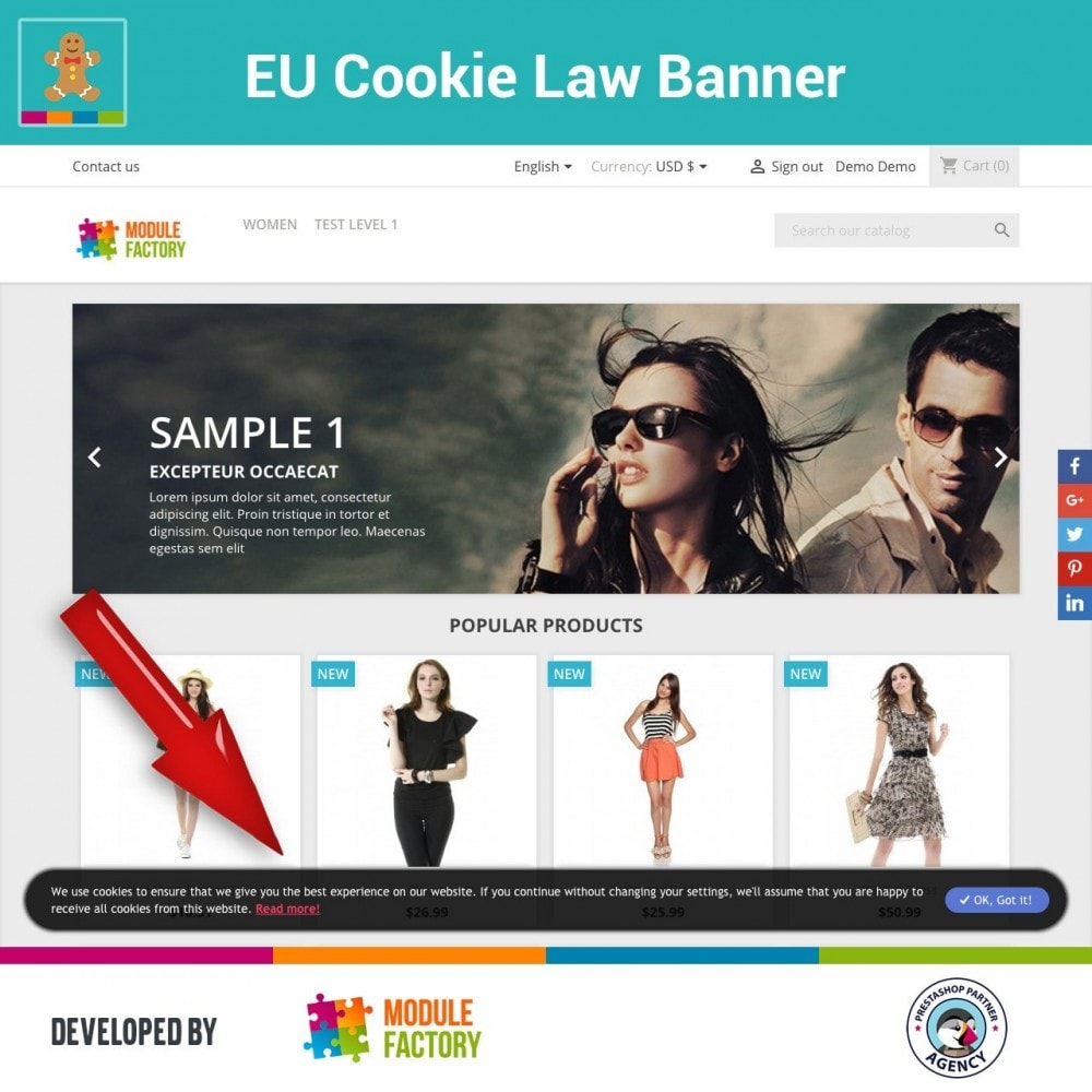 module - Jurídico - EU Cookie Law Alert Banner and Cookie Blocker - 4