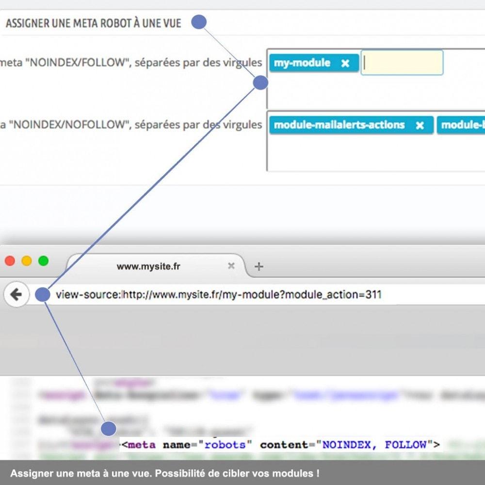 module - SEO (référencement naturel) - SEO meta Robots et Canonique étendues - 4