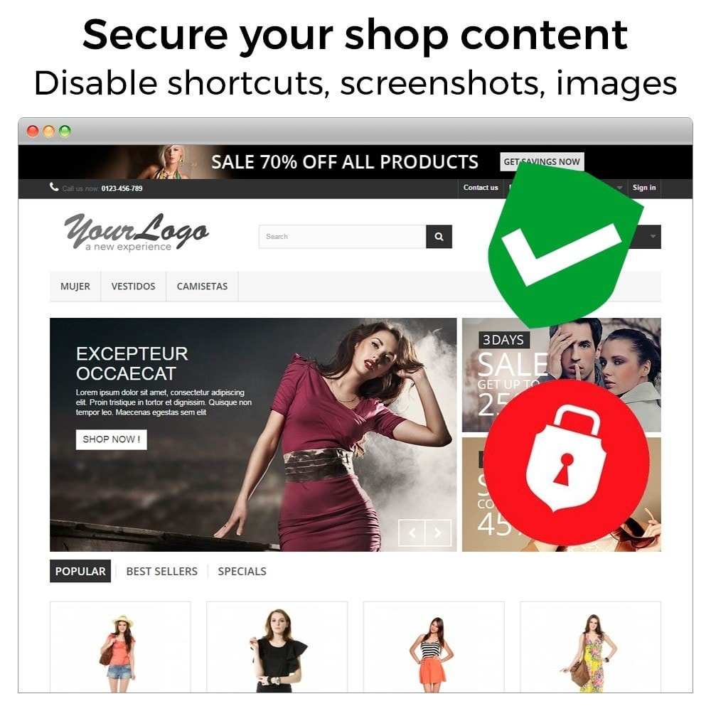 module - Sicherheit & Brechtigungen - Content Protection - Secure your shop - 2