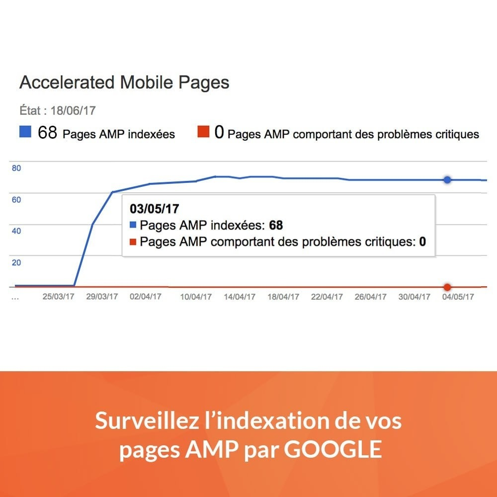 module - Performance du Site - Accelerated Mobile Pages (AMP) PRO - 4