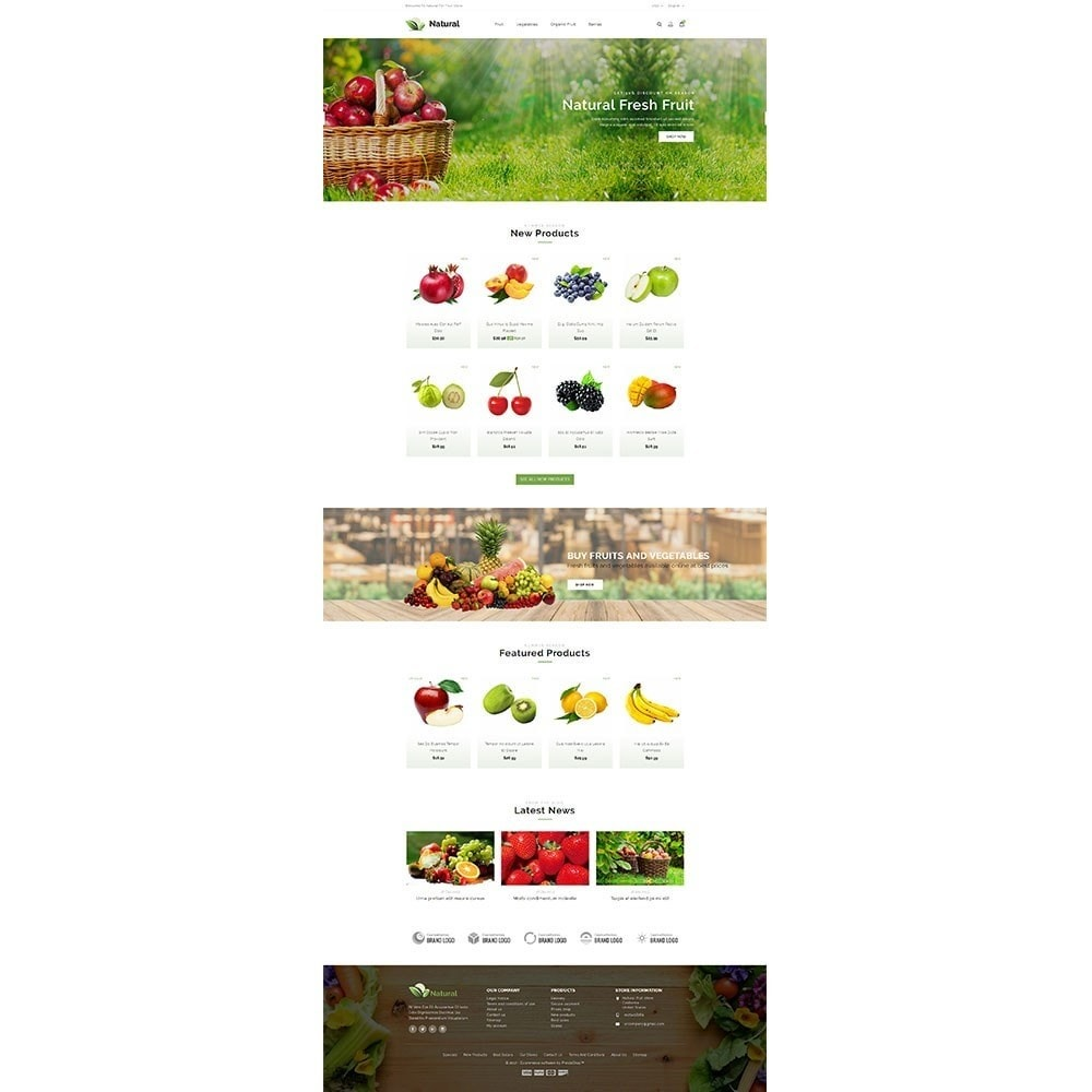 theme - Продовольствие и рестораны - Natural Fruit Store - 2