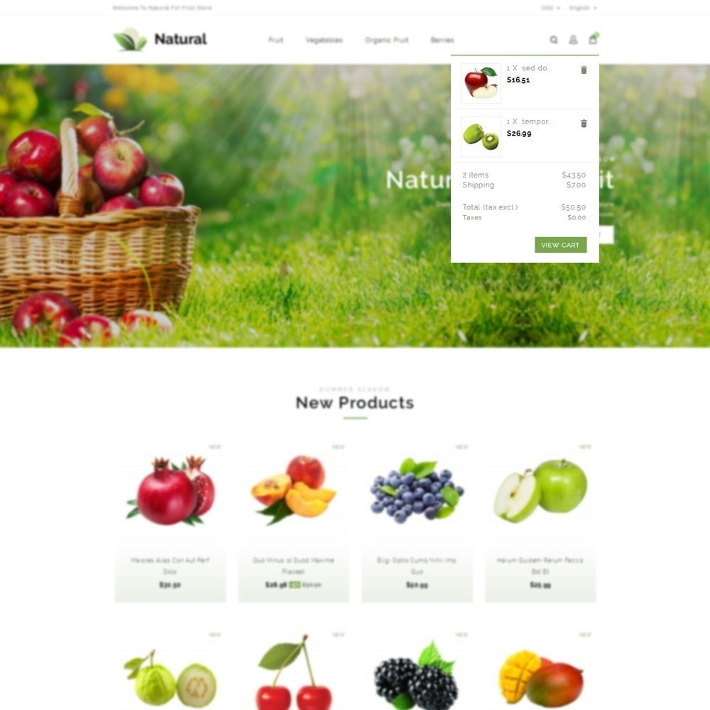 theme - Alimentation & Restauration - Natural Fruit Store - 7