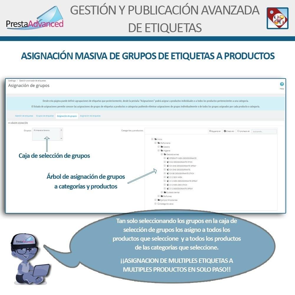 module - Etiquetas y Logos - Etiquetas: Gestión Avanzada y Publicación - 7