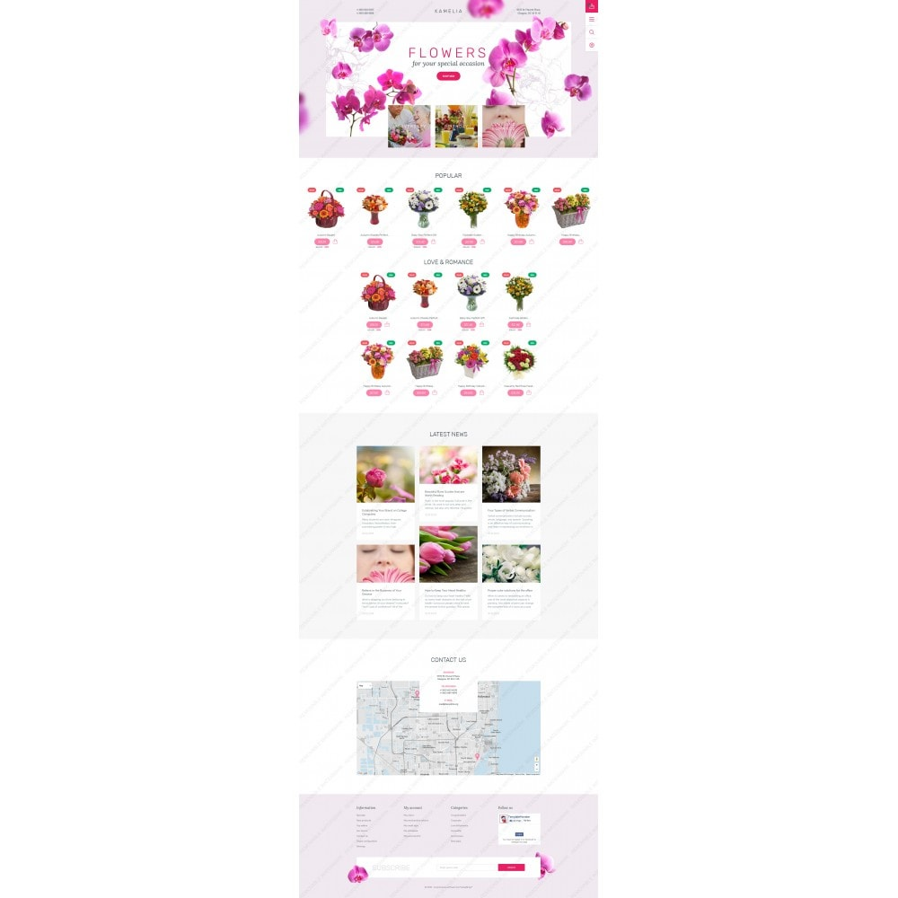 theme - Gifts, Flowers & Celebrations - Kamelia - 3