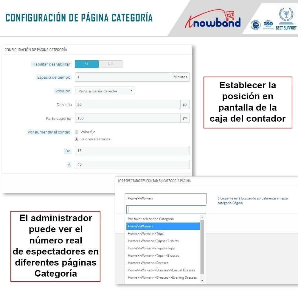 module - Informaciones adicionales y Pestañas - Knowband - Contador de visualizaciones de la página - 5