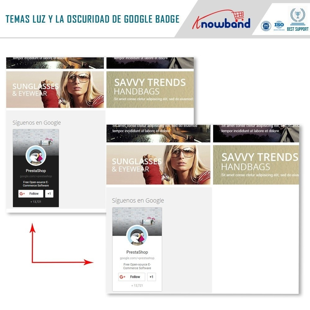 module - Widgets para redes sociales - Knowband - Insignia de Google Plus - 3