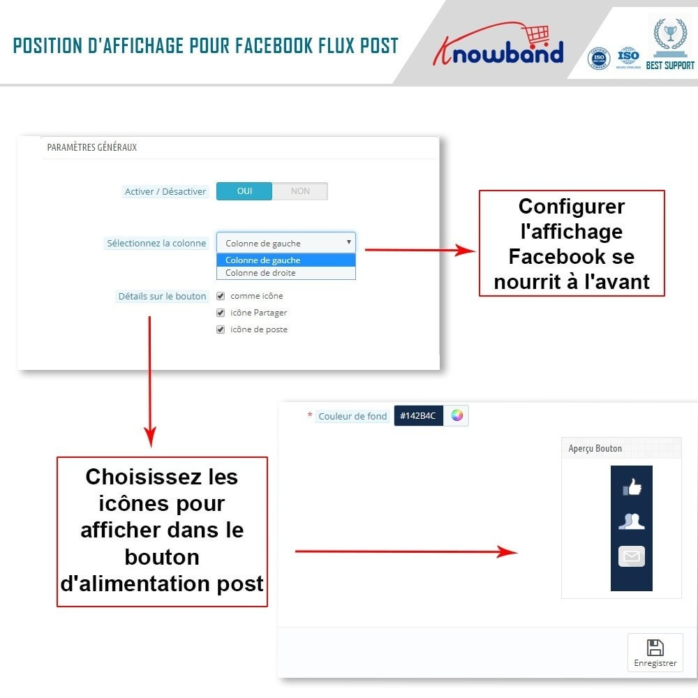 module - Widgets réseaux sociaux - Knowband - Flux de Posts - 3