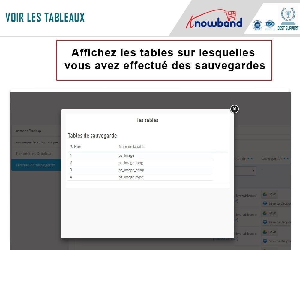 module - Migration de Données & Sauvegarde - Knowband - Gestionnaire de Sauvegarde facile de BDD - 6