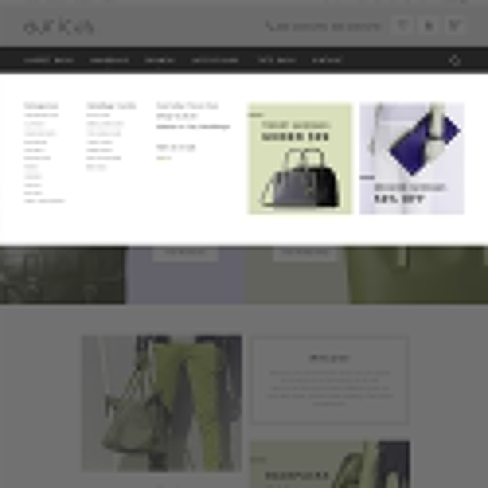 theme - Fashion & Shoes - Auricus - Handbag Responsive - 3