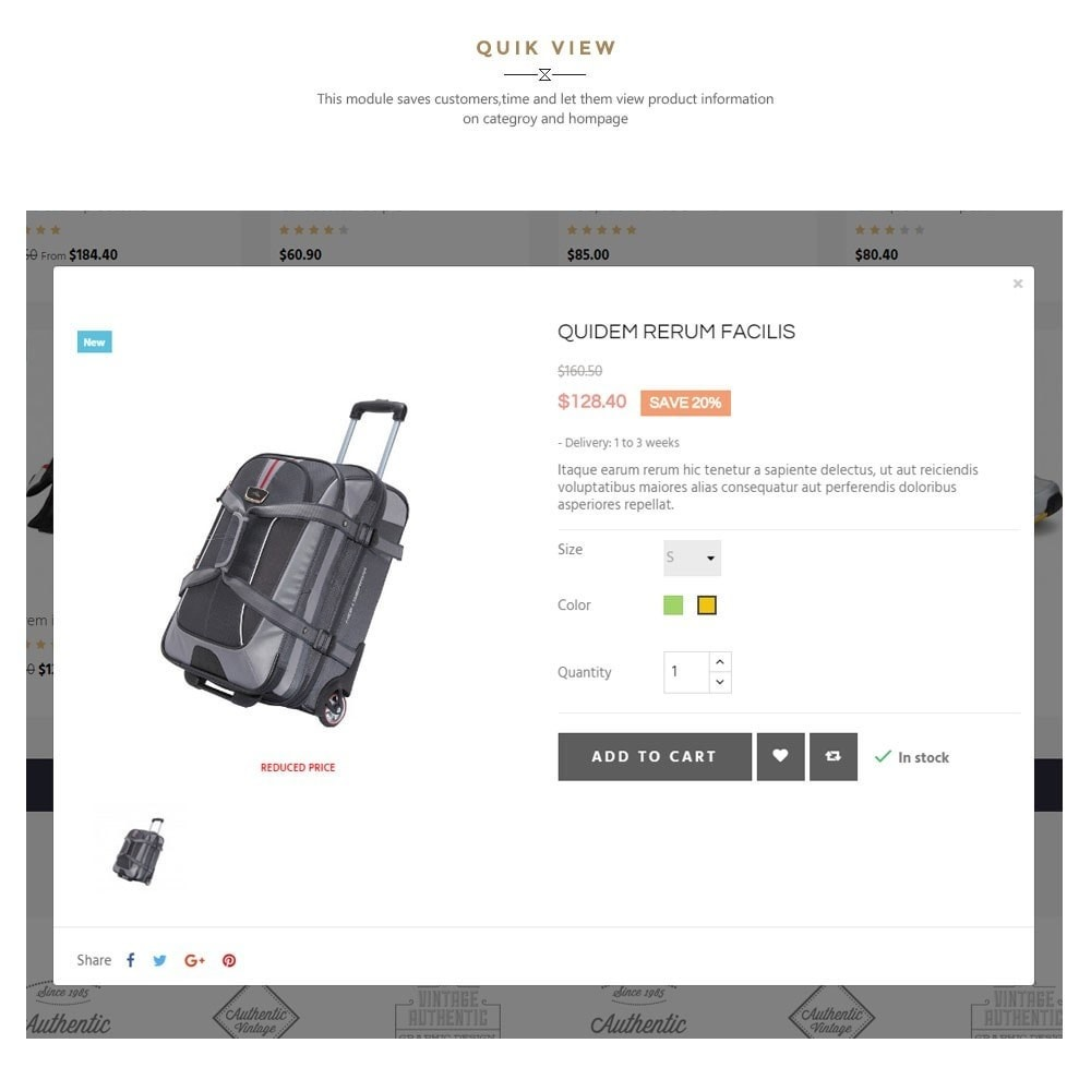 theme - Moda & Calzature - Leo Travelgear - 7