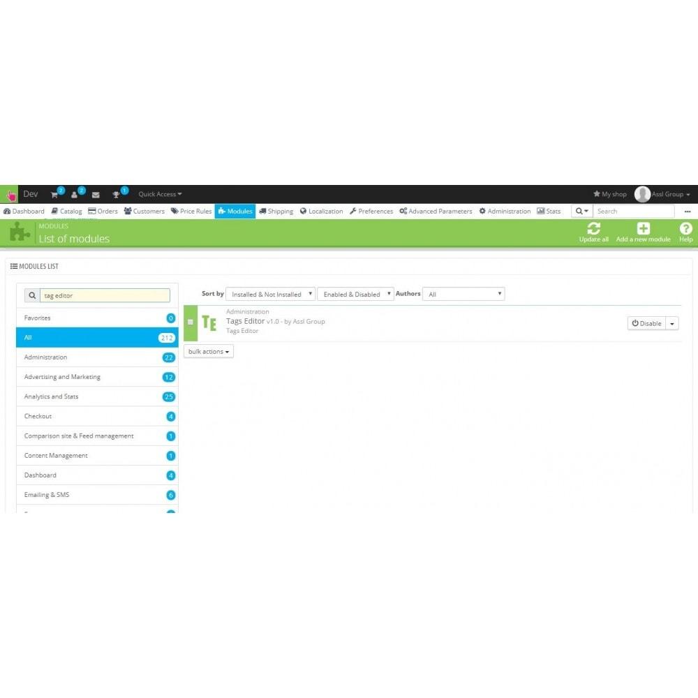 module - Дополнительной информации и вкладок товара - Tag Editor - 3