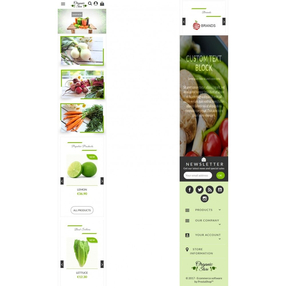 theme - Alimentation & Restauration - Organic Store - 6