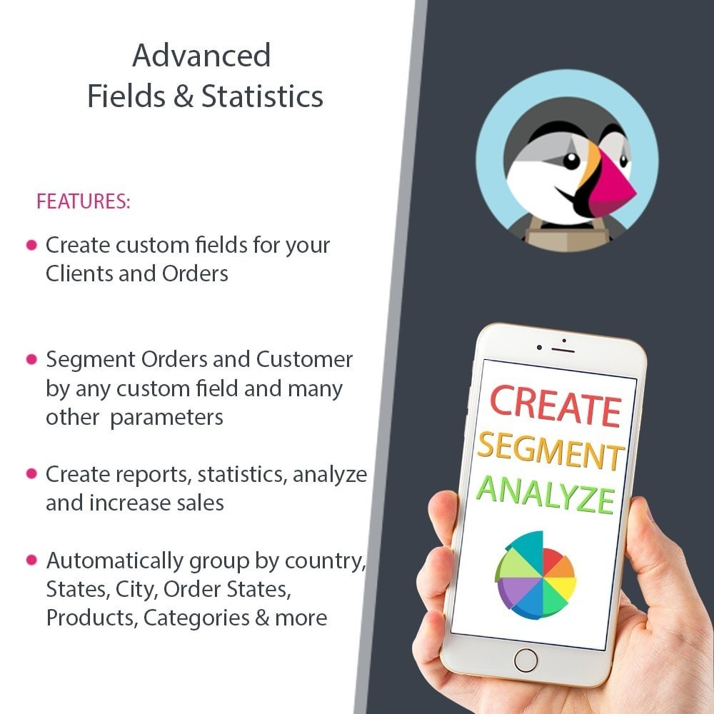 module - Gestione clienti - Advanced Reports, Statistics, Segments & Fields - 1