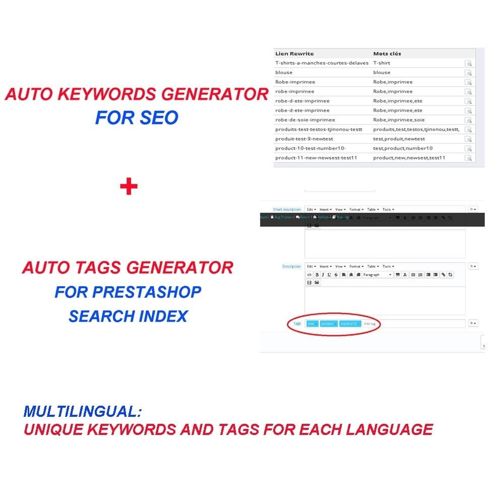 module - SEO (référencement naturel) - AUTO KEYWORDS GENERATOR - 1