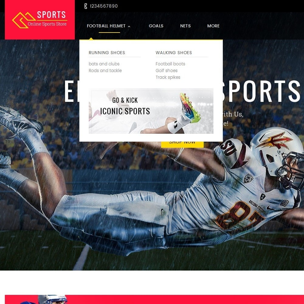 theme - Sports, Activities & Travel - Sports Store - 8