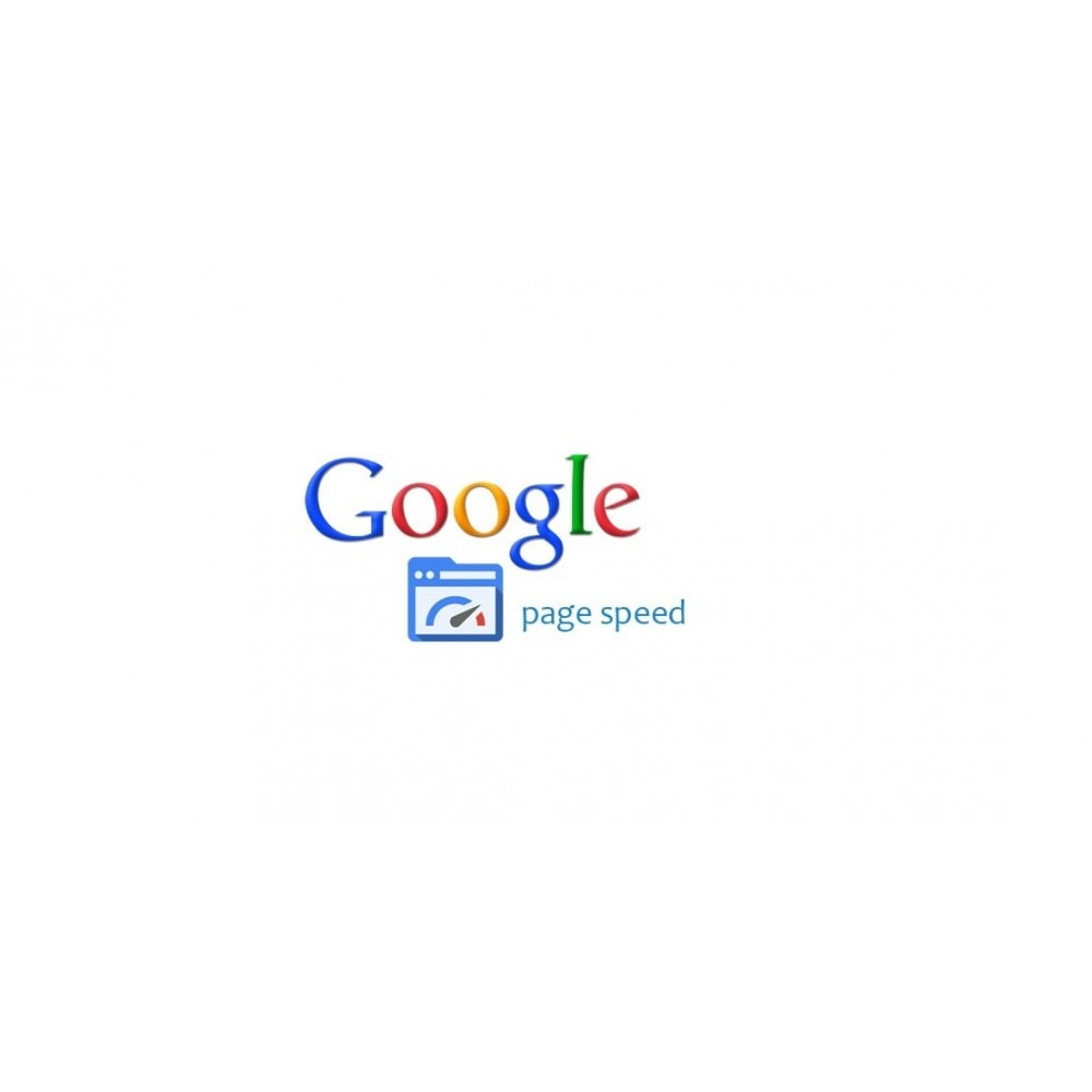 module - Performance du Site - Google PageSpeed Insight - 1