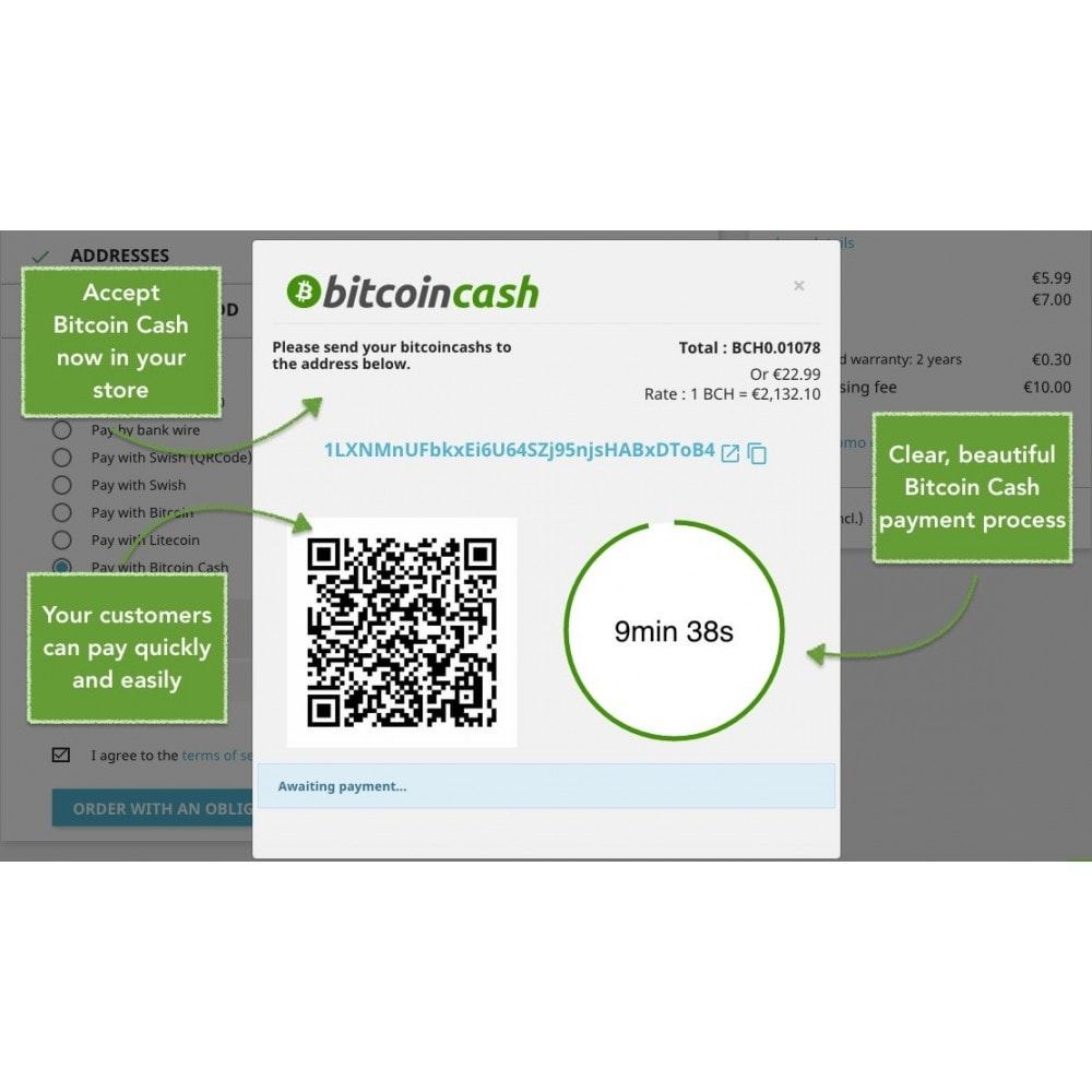 module - Andere Zahlungsmethoden - Bitcoin Cash - Accept bitcoin directly into your wallet - 1